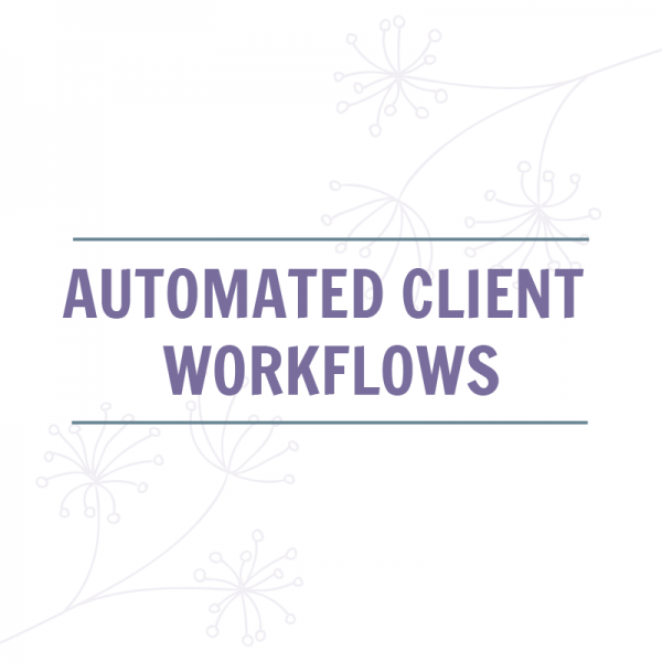 Automated Client Workflows Product Image
